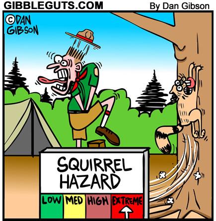 squirrel hazard cartoon