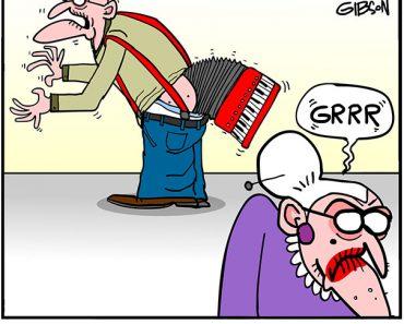 accordion cartoon