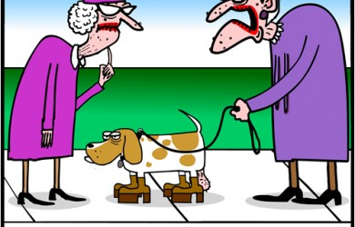 basset hound cartoon