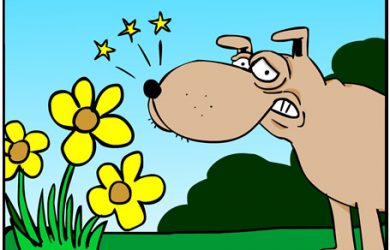 bee dog cartoon