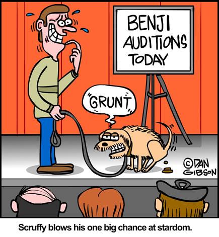 Benji auditons cartoon from Gibbleguts.com