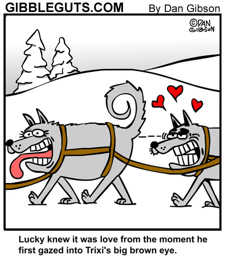 Sled dog cartoon. A cartoon from Gibbleguts.com