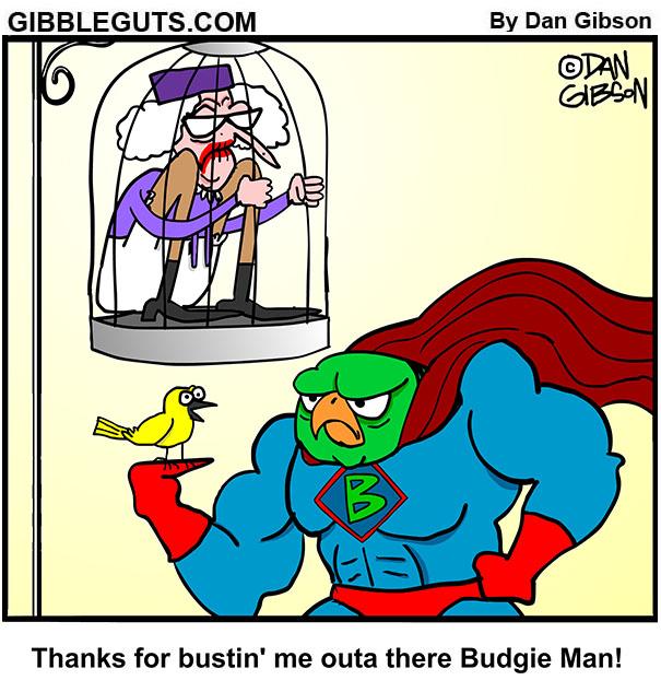 budgie man cartoon
