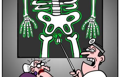 old lady bug up butt cartoon