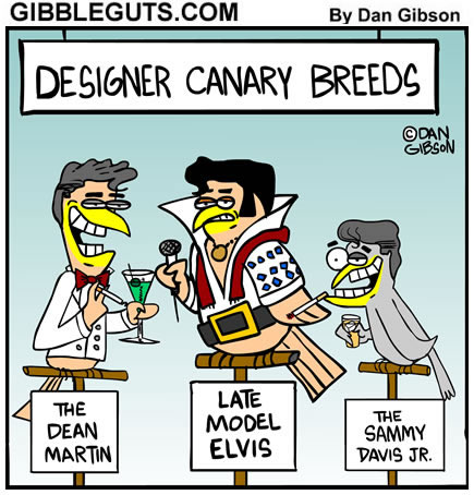 canary cartoon