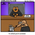 cat judge cartoon