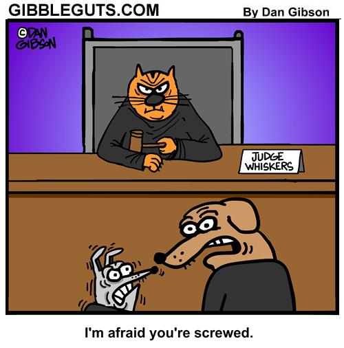 cat judge cartoon