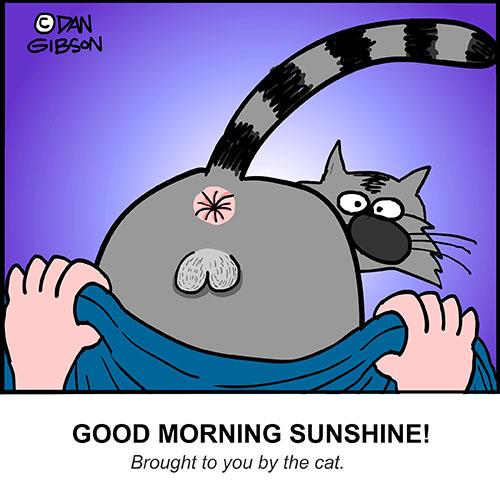 good morning cat cartoon