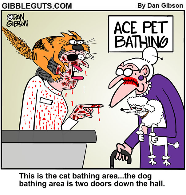 pet grooming cartoon
