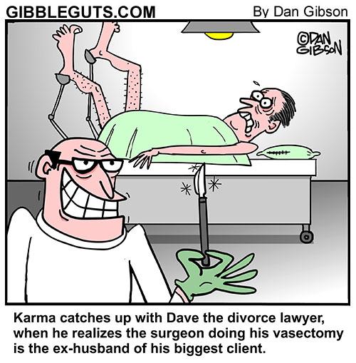 divorce lawyer cartoon