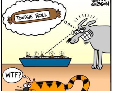 dog treats cartoon