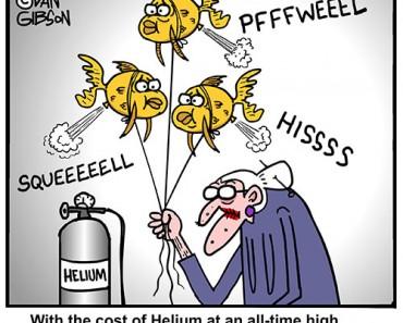 goldfish old lady cartoon