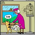 canary and cat cartoon