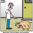 HALLOWEEN MUGGER DOG