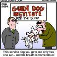 service dog cartoon