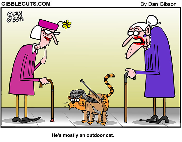 Outdoor cat cartoon