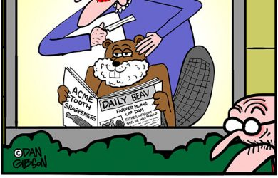 tillie's beaver cartoon