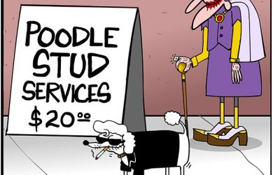 dog stud services cartoon