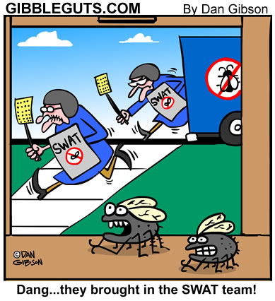 Fly swat cartoon