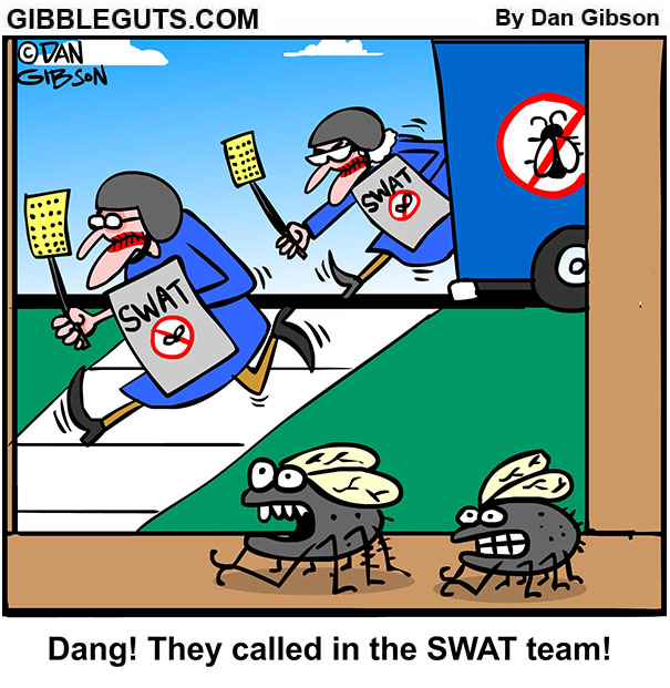 swat team flies