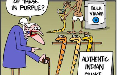 indian snake canes