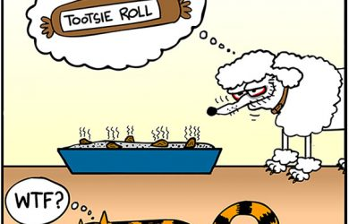tootsie roll dog