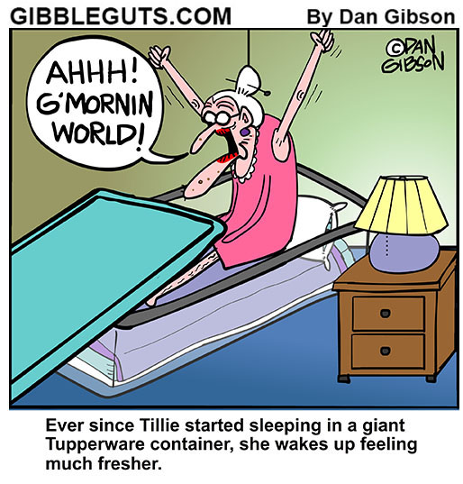 old lady tupperware cartoon