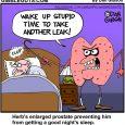 prostate cartoon