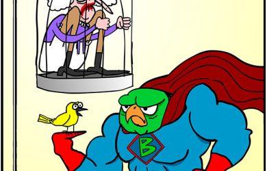 Canary | Gibbleguts Comics