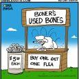 dog bone cartoon