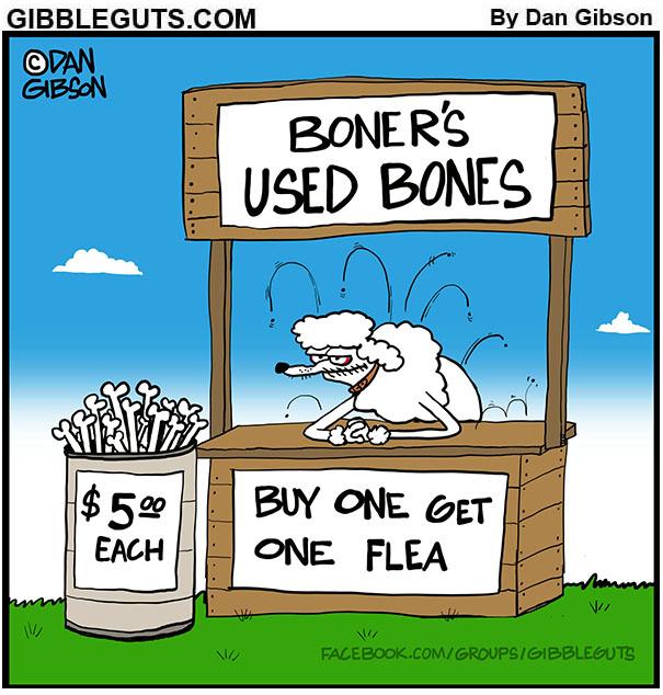 Used Bones for sale cartoon