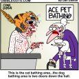 pet grooming cartoon