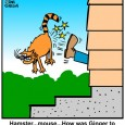 cat cartoon