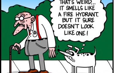 fire hydrant smell cartoon