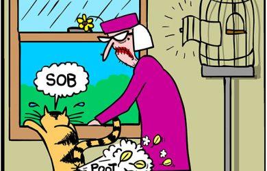 canary and cat cartoon