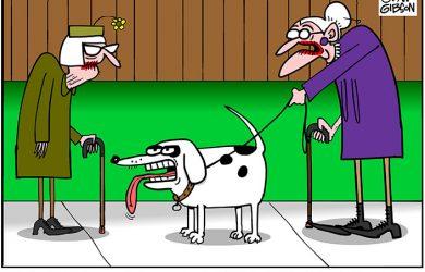 husband dog cartoon