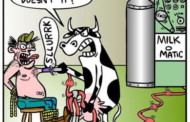 cow revenge