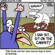 tillies deaf dog cartoon