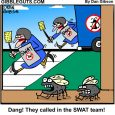 swat team flies