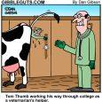 veterinarian cartoon